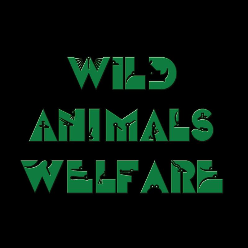 Animal Manager Nicola Melillo